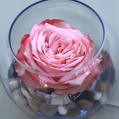 floral-039